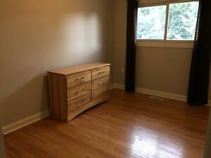 Room available for rent female only