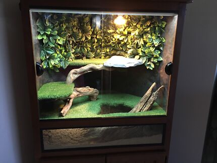 Custom Reptile Enclosure