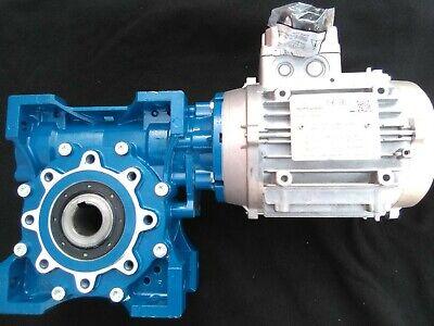 Motovario Motor Gear