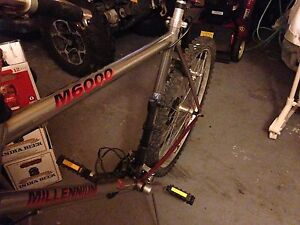 Millennium M6000 Mountain Bike (21 speed)