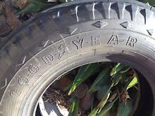 Truck / bus tyre. Hallam Casey Area Preview