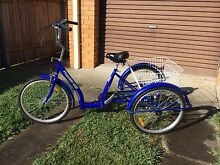 Adult tricycle Laurieton Port Macquarie City Preview