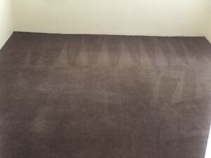 1 room steam cleaning carpets in melbourne region vic cleaning rh gumtree com au