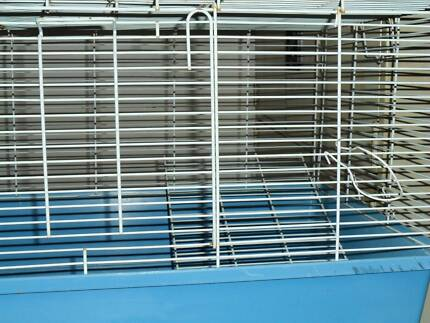 Guinea Pig Cages Pet Products Gumtree Australia Free