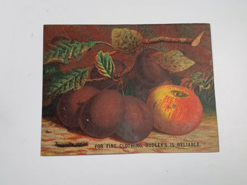 Victorian Trade Card For Fine Clothing Dudley