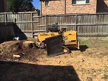Stump grinding  0  Annangrove The Hills District Preview