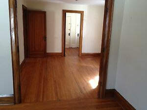 Spacious 2 bdrm downtown apartment Sarnia Sarnia Area image 9