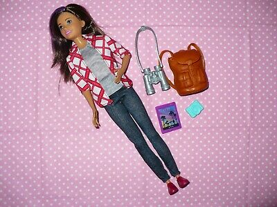 Mattel Barbie SKIPPER DOLL Dream House Adventures Complete with Accessories