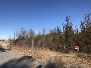 26 acres of Land for sale. 1200' of Frontage on a maintained rd.