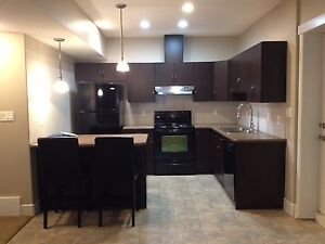 Basement Suite With Private Parking in Tamarack