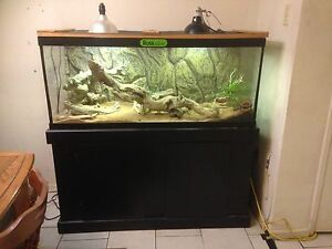 75 g tank w/ stand & dragon. Everything you need London Ontario image 2