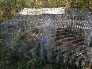 Large double cage