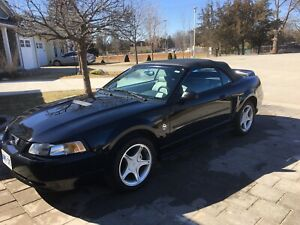 1999 Mustang Convertible low km 35th Anniversary