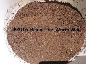 Worm Castings (Vermicompost)- For Healthy Plants And Gardens Forest Lake Brisbane South West Preview