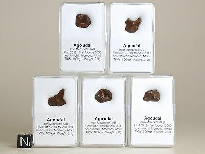 5x Meteorit AGOUDAL + Zertifikat Sternschnuppe Geschenk Glücksbringer