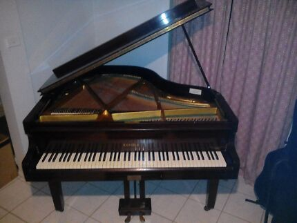 Baby grand piano Kellyville Ridge Blacktown Area Preview