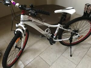 GIANT MOUNTAIN BIKE 10