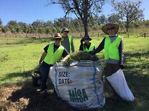 Clean Up Australia Day - Volunteers Wanted! Morningside Brisbane South East Preview