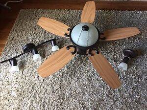 Ceiling fan and lighting