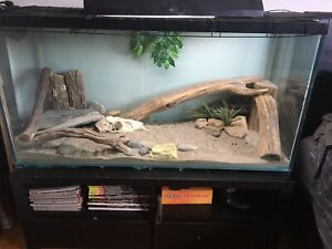 90 gallon reptile tank