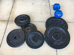 Free weights and Dumbbells East Maitland Maitland Area Preview