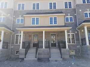 Brand New 3 bedroom town home in heart of Ajax!