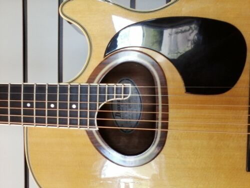 Ibanez R-400 Ragtime  aco/elec Finger Pickers Edition Hardshell case included