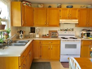 ROOMMATE Wanted LARGE Furnished Rm. Dec 1 ..near DAL