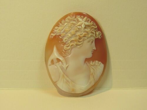Vintage Hand Carved Cameo for Brooch Pendant w/o brooch backing ANT302