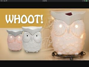 Looking For Whoot Scentsy Warmer
