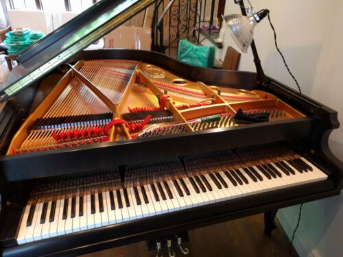 J&C Fischer Baby Grand Piano Ebony Complete Restoration+Bench GR8 FIND