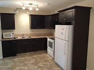 Affordable newer 1 Bed Basement Suite - Just $795.00!!