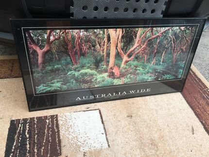 Australia wide picture and steel frame/glass front 100cm x 50cm