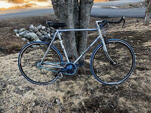 Single speed size large