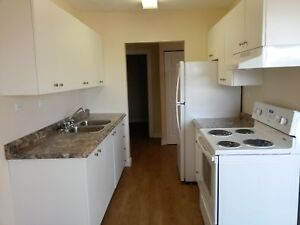 Nicely Renovated 2 bdrm Suite       Avail Today!   $860/mth
