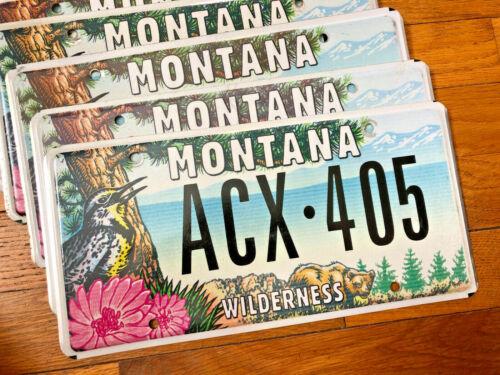 "Single Montana ""Mountain Wilderness"" License Plate  -Good Condition"