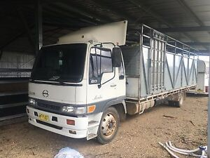 Hino Ranger truck with horse or cattle crate. Armidale Armidale City Preview