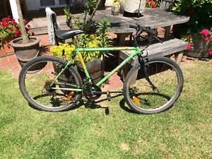 Shogun Trailbreaker Mountain Bike