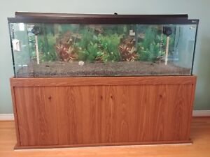 120 Gallon Aquarium Tank with filtration system, accessories