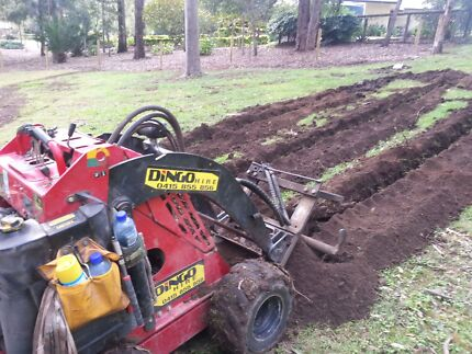 Dingo hire with operater holes trenchers earthmoving Greenbank Logan Area Preview