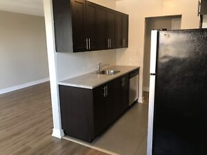 Fully Renovated 2 Bedroom Available NOW