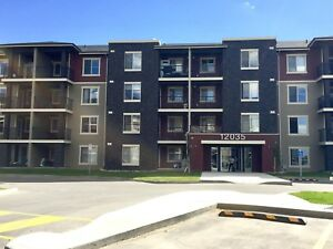 Fully Furnished 2 Bedroom Executive Suite South Edmonton
