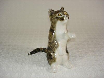 Mike Hinton Tabby Cat