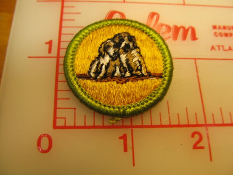 DOG CARE merit badge plastic backed patch (oP)