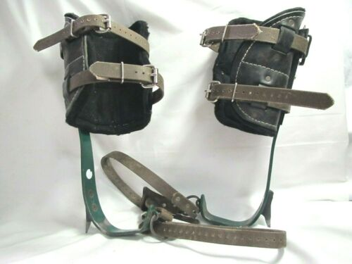 Tree Climbing Spurs/Spike by Buckingham w/ Steel Supported Pads *Good Shape*