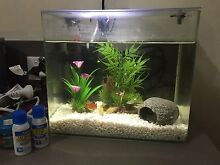 Small fish tank Southern River Gosnells Area Preview
