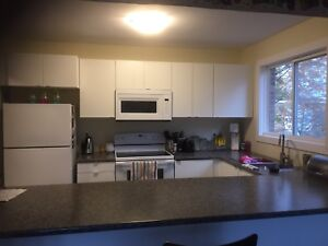 One bed room apartment for sublet/rent