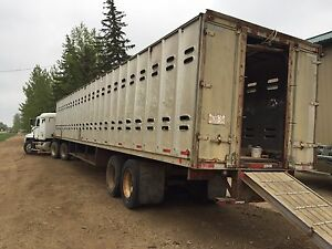 Cattle liner