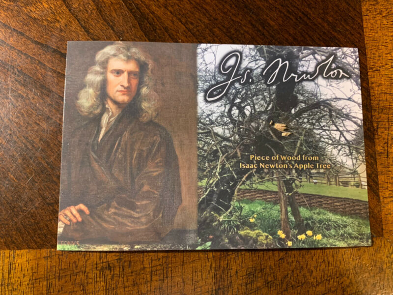Isaac Newton relic piece of wood tree Apple Tree Gravity History Collectible