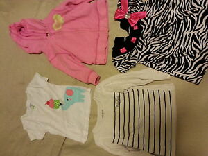 12-24 mnth gently used girl clothes